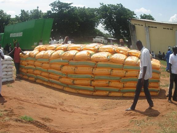 Image result for Fertilizer distribution on Adamawa