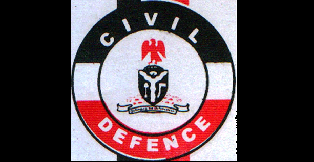 Image result for nscdc logo